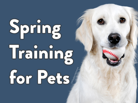 Spring Training for Pets: Iowa Edition