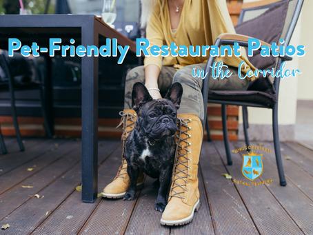Pet-Friendly Restaurant Patios in the Corridor