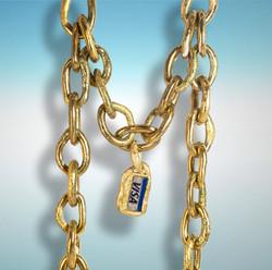 visa necklace