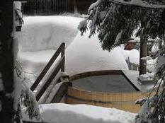 Pokljuka - preživite aktivni vikend v naravi - zima 2019/2020