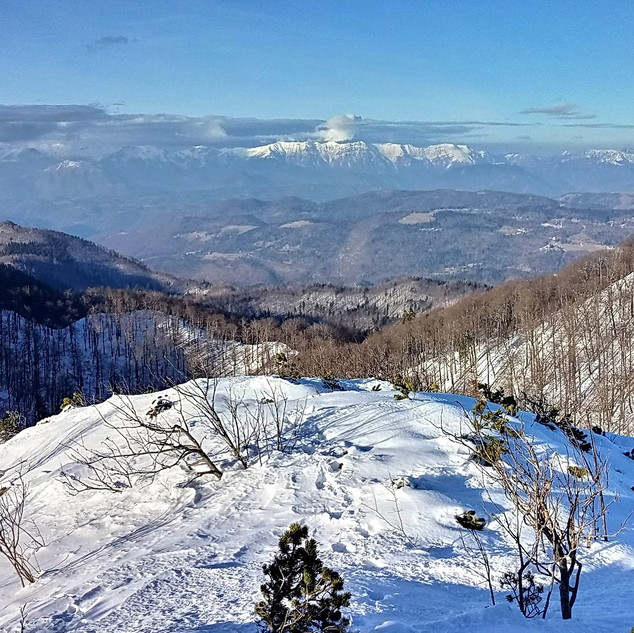 Trnovski gozd - RAZGLED iz Golakov