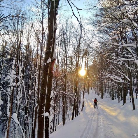 December 2019 - marec 2020 - S smučmi po Trnovski planoti