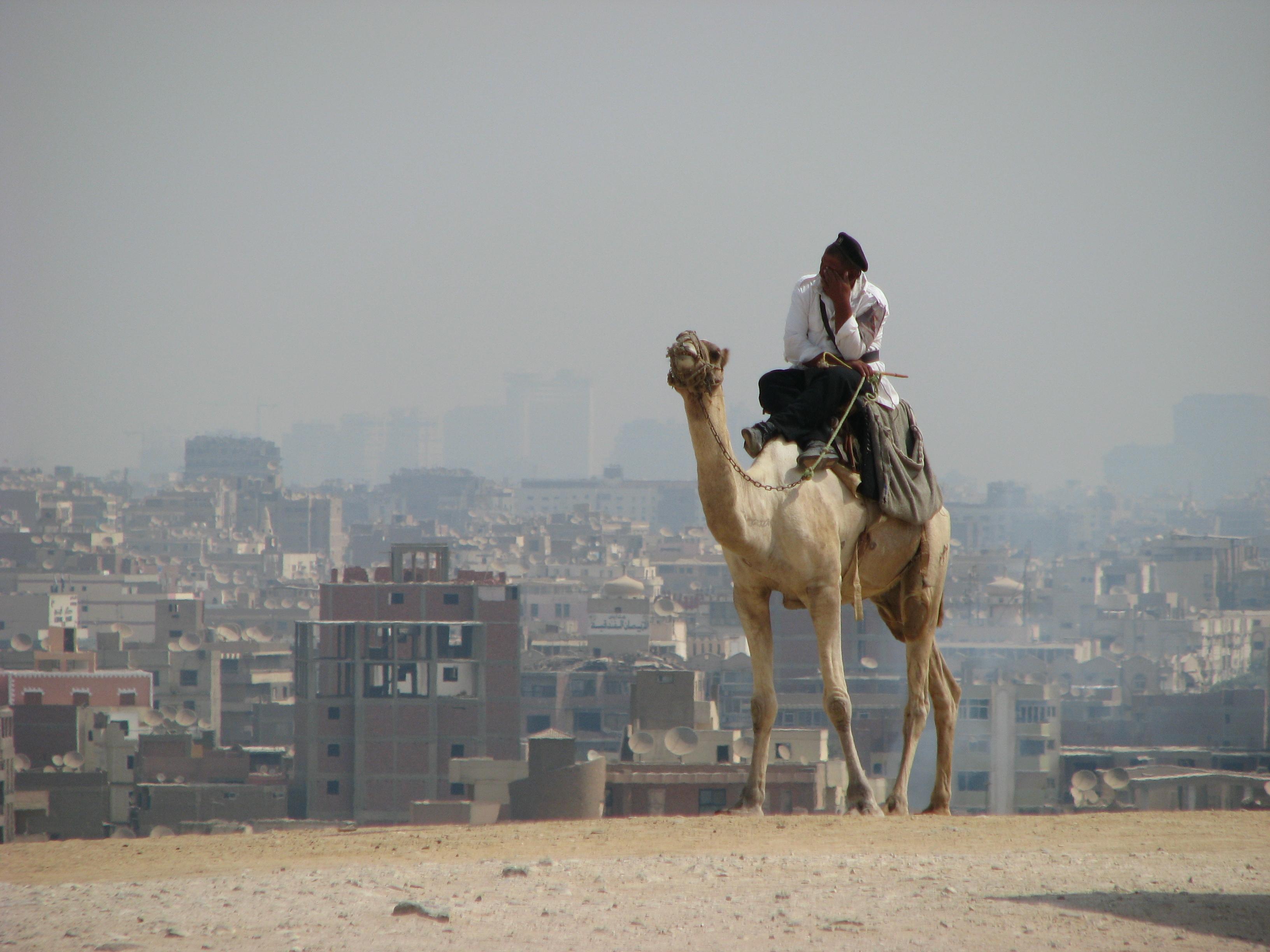 Верблюжий конвой