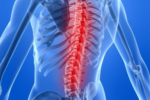 How Building Core Strength Can Reduce Back Pain