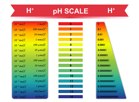 What Chiropractic Patients Need To Know About Acidity vs. Alkalinity In The Body