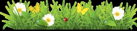 1520611246cartoon-green-grass-png.png