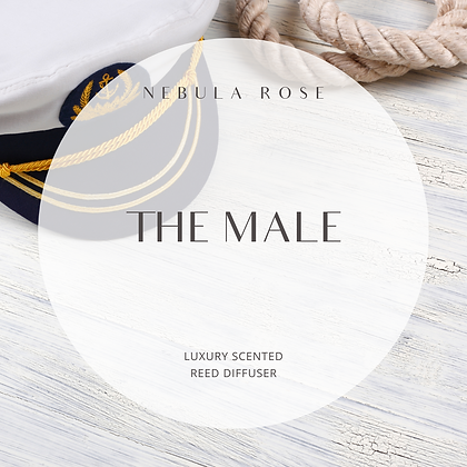 The Male - Reed Diffuser