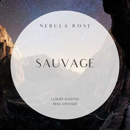 Sauvage - Reed Diffuser