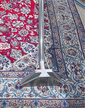 rug_cleaning_art_of_clean_rinse.jpg