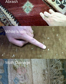 rug cleaning Art of Clean.png