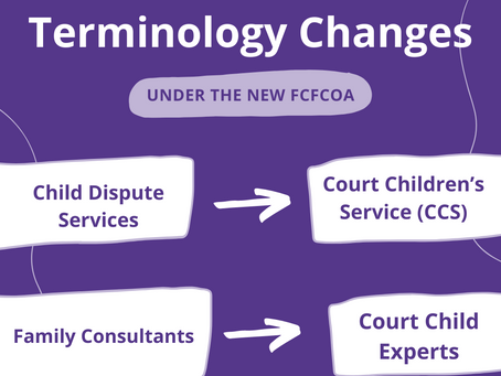 The FCFCOA: Terminology Changes