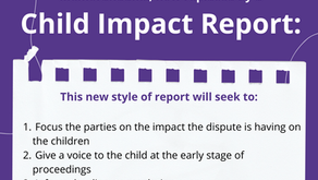 The FCFCOA: Reporting Process