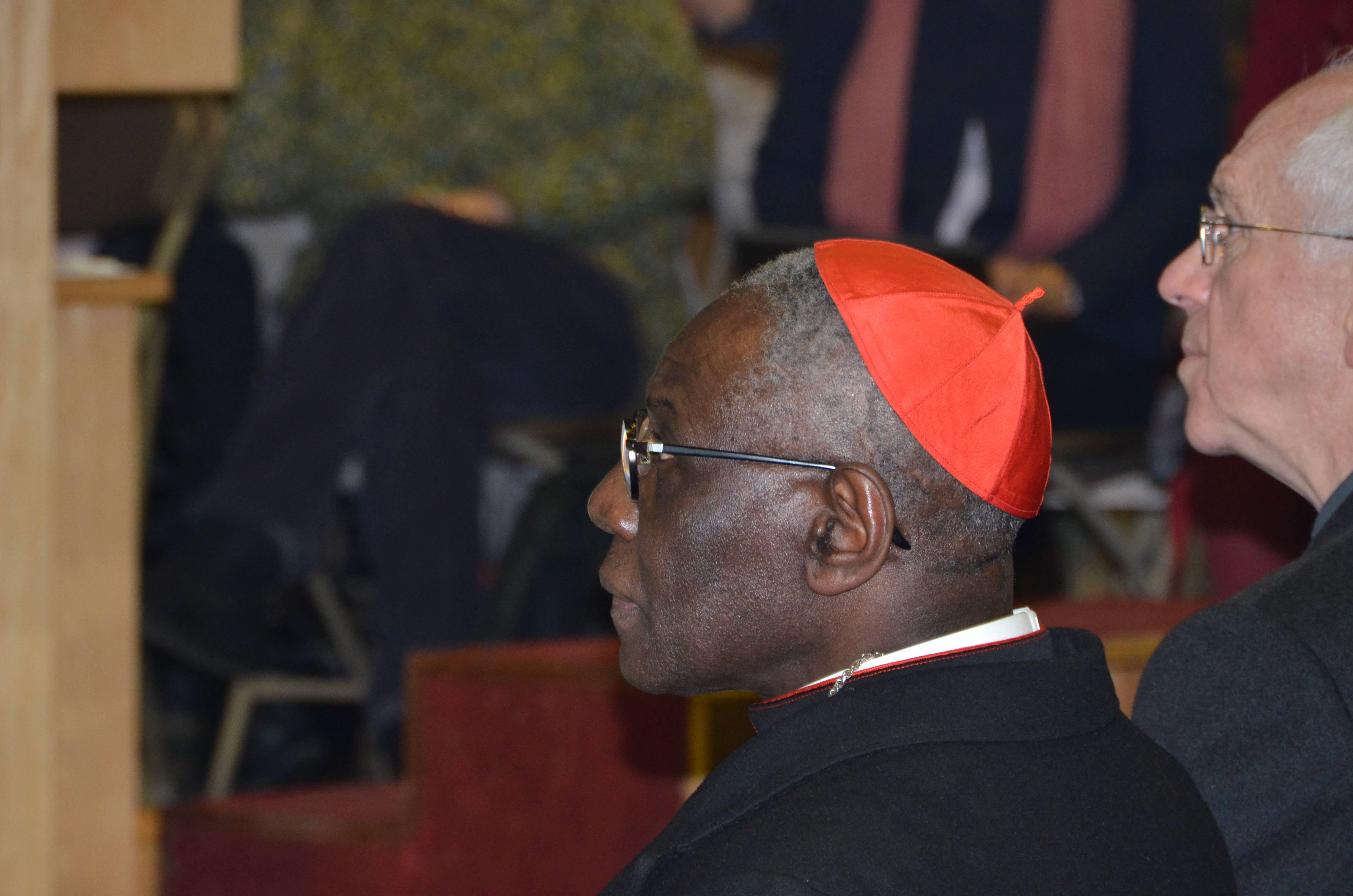 2018-02-07_2816 Cardinal Sarah
