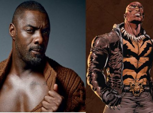 Idris Elba Teases Bronze Tiger Role in The Suicide Squad