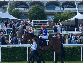 Another Winner and a Royal Ascot Entry