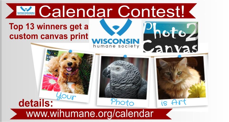Canvas Winners Calendar Contest