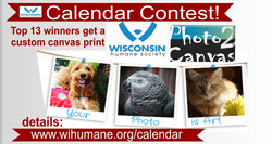 Canvas Winners Calendar Contest