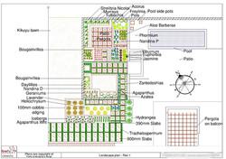 Compact square informal garden