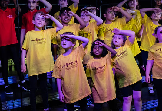The Schools Choir singing at our Gala Concert during 2019.