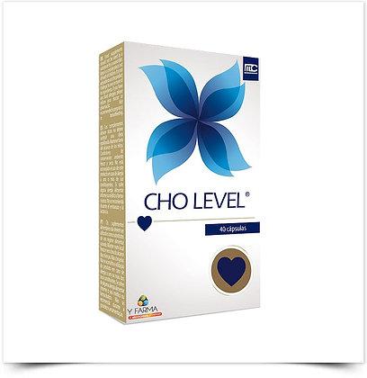 Cho Level