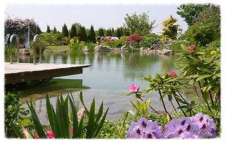 Schwimmteich Herford