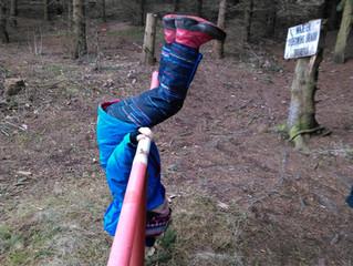 Co tělocvik v lesní škole?