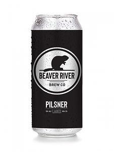 beer-3921055_bd676_hd.jpeg