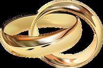 Wedding_Rings_PNG_Clip_web_Art-2500_edit