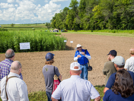 2018 Farm Bill Contains Provisions to Make Industrial Hemp Production More Common