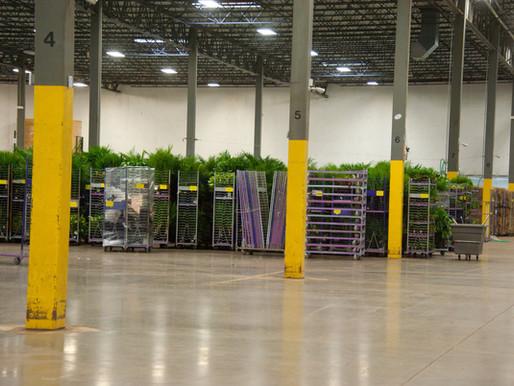 Crop Insurance Deadline Nears in Maryland: Nursery Growers Need to Make Insurance Decisions Soon