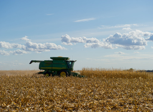 Eligible Corn Growers and Landlords Begin Filing Syngenta Settlement Claims in May