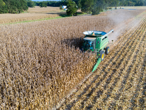2018 Farm Bill Decision Between ARC and PLC May Not Always Be Clear for Maryland Producers
