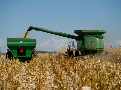 Proposed Settlement of Claims Against Syngenta: What Does It Mean For Delmarva Producers?