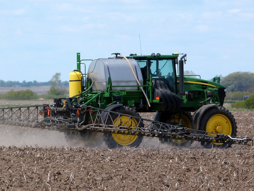 Have Dicamba Drift Damage? Here's What You Can Do
