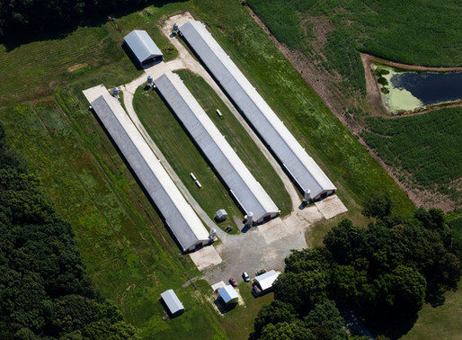 Maryland Court Upholds the 2014 CAFO Permit for Complying With EPA's Requirements