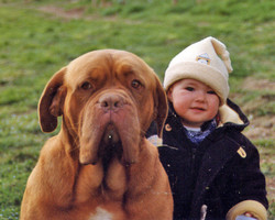 Tiziana con Dogue de Bordeaux