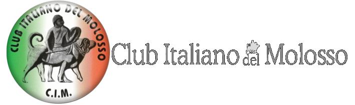 Banner Logo CIM