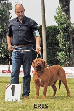 XXVI Raduno Club Italiano Molosso