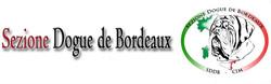Banner Logo Sezione