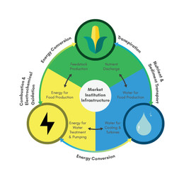 Research Publication: Advances in Water Research