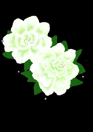 whiteazalea.png