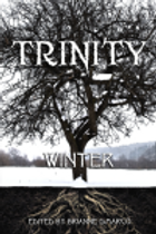 trinitywinter.png