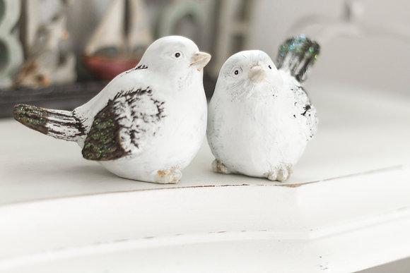 Ornamental Sparrow x2