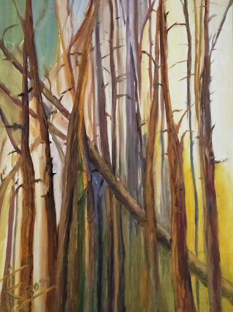 """#15 Tapybos paveikslas """"Saulėtas miškas"""""""