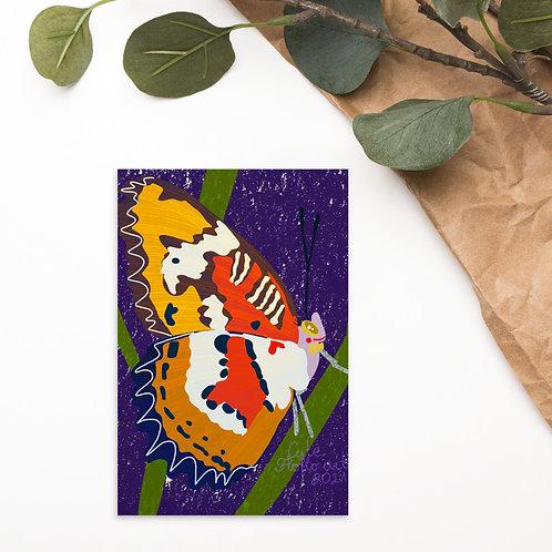 Flat color butterfly Standard Postcard