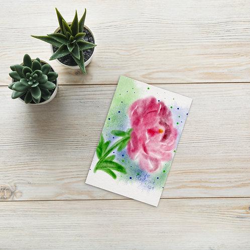 Pink peony watercolor Standard Postcard