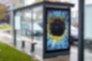 Campagnefoto'- week 44 - Eyescan (3).jpg