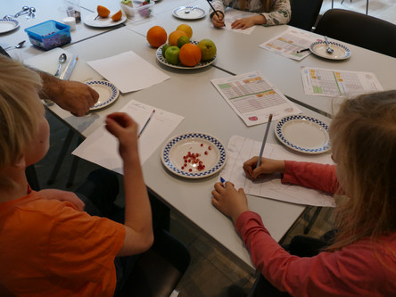 """The game is over and our """"little explorers"""" have collected many native fruits from the """"New World"""". Now it's time to start the evaluations of our fruits/vegetables"""