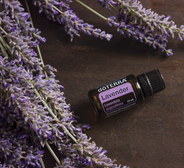 lavender_1400x.png