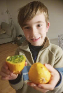 A seasonal African exotic fruits called Kiwano was tasted during this workshop!